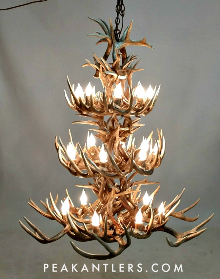 Pleasant Shop Antler Chandelier Kit Wiring Digital Resources Xeirawoestevosnl